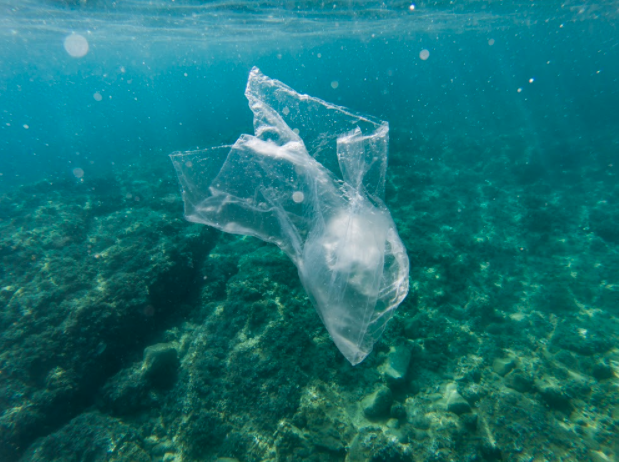 Facts about plastic bags