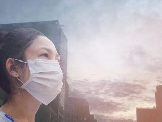 Air Filter Masks