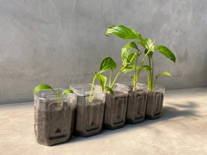 The 3 R's of Environment Protection – Reduce, Reuse, Recycle!