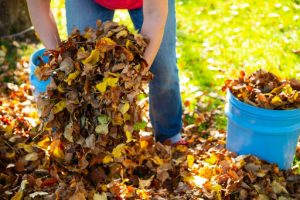 4. Yard Waste Removal