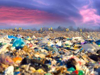 dispose of garbage