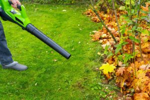 4. Remove Your Unwanted Summer Garden Items