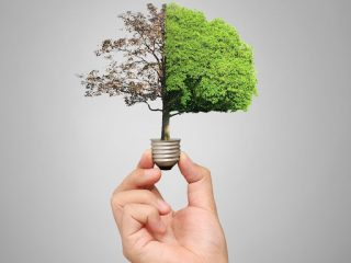 7 Ways to Save Energy at Home