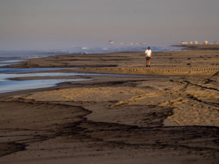 tate of Emergency in California After a Major Oil Spill